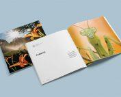 Patio Life Book